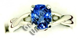 Cornflower color Blue Sapphire set in Caduceus double Helix Serpent Ring.Gemstoneuniverse.com