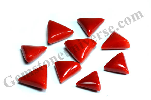 Triangular Organic Red Corals from Sardinia! Gemstoneuniverse.com