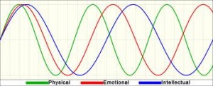 Biorhythms - cyclical patterns that follow in a sine wave fashion