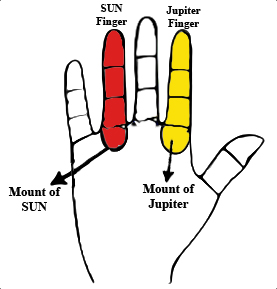 Palm Diagram marking the Index finger and the ring finger