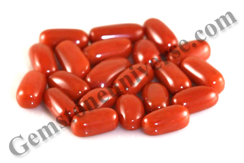 ASIM Italian Red Coral Limitless