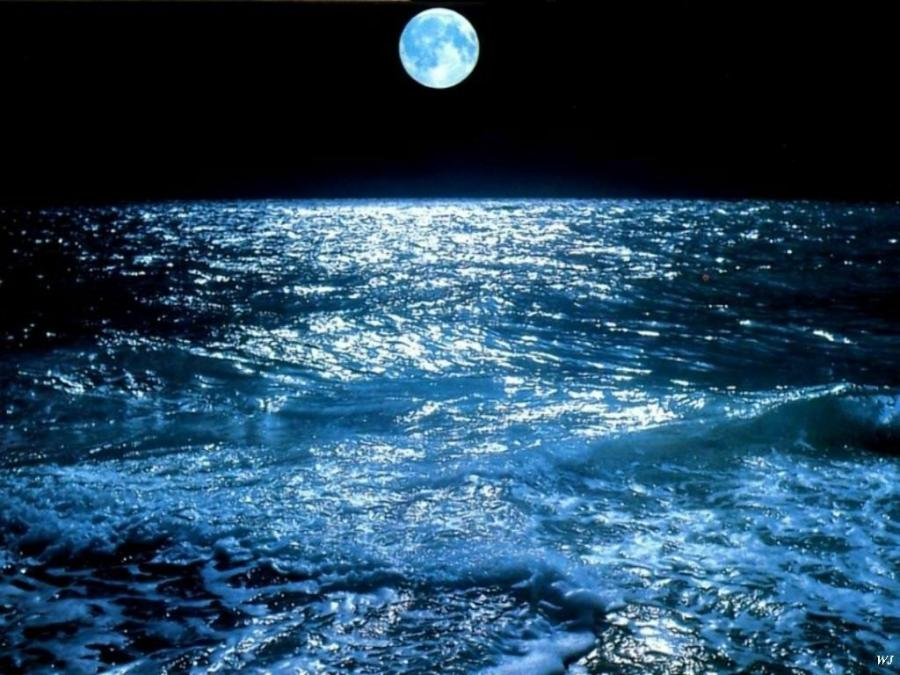 Impact of Moon on Tides in the Ocean