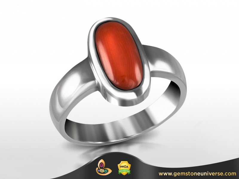 The Italian Red Coral is referred to as the Desi Moonga