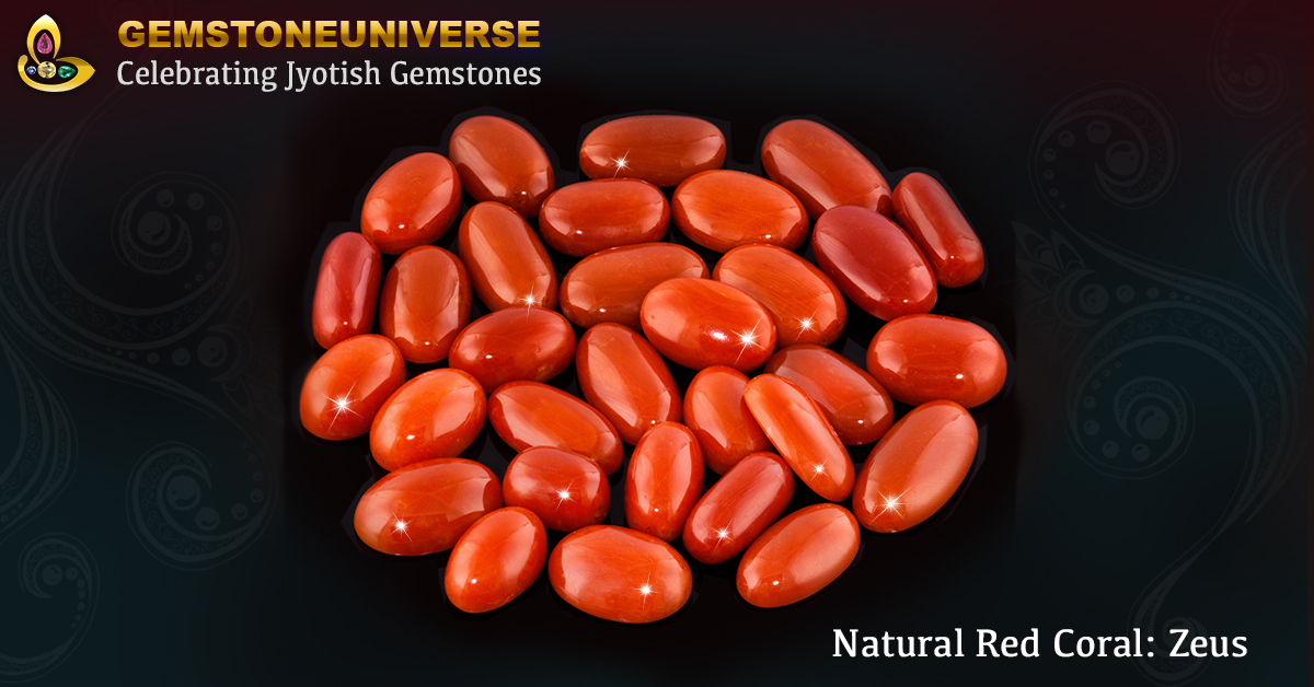 Japanese Coral Stone Price | Red Coral Stone Price Per Carat