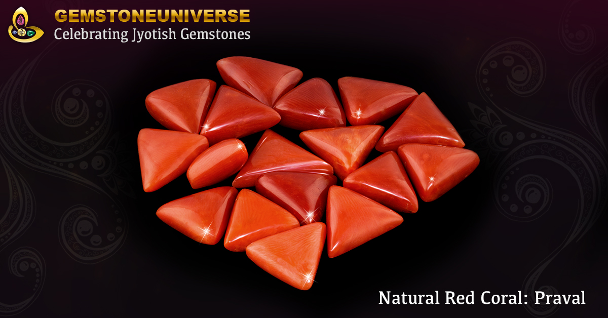 Triangle Shaped Italian Red Coral for Mars in Indian Astrology Lot Praval