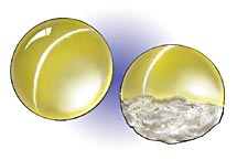 cat's eye gem polished dome and rough underside Image courtesy Professional Jeweller