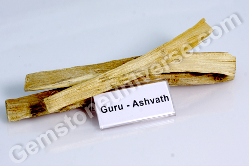 Ficus religiosa Ashwath Bhasma Sacred Ash for Jupiter
