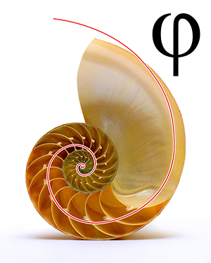 Golden Ratio Phi