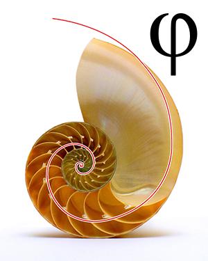 Golden Ratio Phi